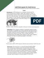 Tyranid Bioweapon Description for Dark Heresy