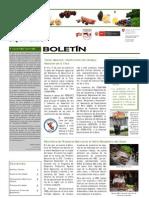 Boletín PBD Nº3