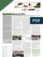 Boletín PBD Nº5