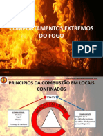 Comportamentos Extremos Do Fogo