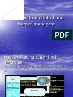 ion Control and Burner Managent