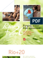 RIO 20 Forging Action With Agreement