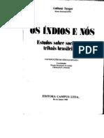 Anthony+Seeger+Os+Indios+e+Nos