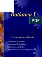 Botânica briófitas e pteridófitas