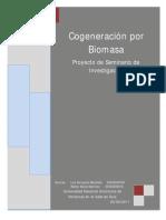 Cogeneración Por BiomasaL&W