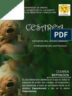 7.- Seminario de Cesarea Corregido