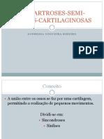 ANFIARTROSES-SEMI-MÓVEIS-CARTILAGINOSAS