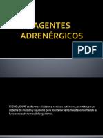 AGENTES ADRENÉRGICOS