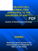 Anemia Workshop1
