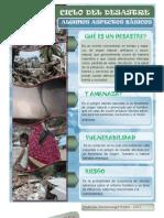 CICLO DE DESASTRES
