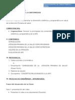 Guia Practica Dimensiones Aps