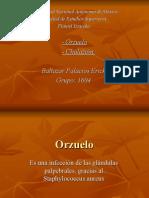 Orzuelo, Oftalmología.