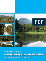 roadmap-framework-ind-march-2010