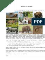 Descriptive Text-wild Animal