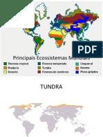 Principais Ecossistemas Mundiais Prof Guilherme