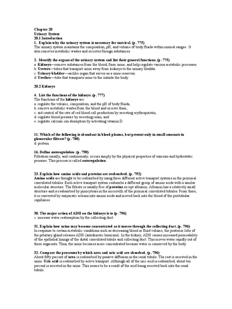 Chapter 20 Urinary Bladder Urinary System