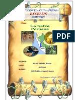 La Amazonía - selva Peruana
