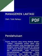 managemenlaktasi