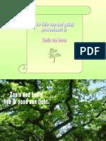 Als_een_boom