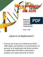 Replicacin Del ADN