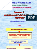 Clase 9 Riqueza Biologica Del Mar Peruano