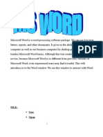20567376-13076296-Microsoft-Word