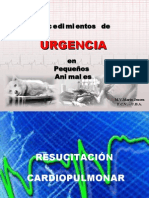 CURSO ENF. Y EMER. UBA 2008 - R.C.P. - Clase 2