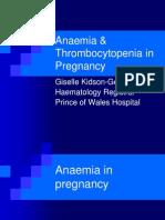 1 Anaemia n TCP in Pregnancy 2008 Dr G Kidson