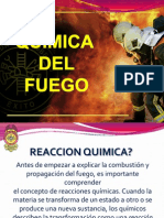 09-Quimica y Comport a Mien To Del Fuego_2