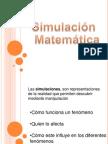 simulacion matematica