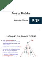 2 - Arvores Binarias - Conceitos Basicos