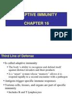 Bio732 Chapter 16 - Adaptive Immunity