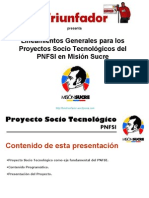 lineamientospstteletriunfador-090621135340-phpapp02