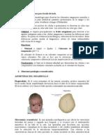 Trabajo de Embrio Terminado