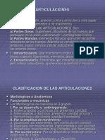 ARTICULACIONES1
