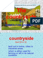 The Countryside