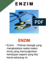 ENZIM - NEW