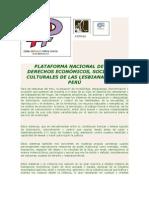 PLATAFORMA DE LOS DERECHOS ECONOMICOS SOCIALES Y CULTURALES DE LAS LESBIANAS PERU