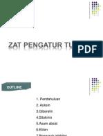 Prs.ZPT-1