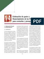 14 - Estimación de gastos y financiamiento de las FESP