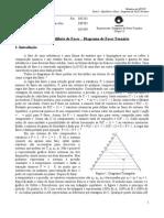 Exp1-Diagrama de Fases Ternario