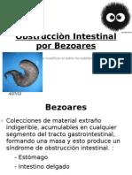 Obstrucciòn Intestinal por Bezoares