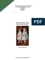 Analise Rosa e Azul Renoir
