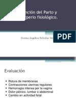 20090822_atenci__n_del_parto_y_puerperio_fisiol__gico
