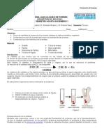 Practica 6 enzimas