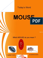 Which Mouse