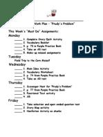 Prudys Problem Work Plan