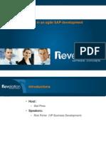 Controlling Change in an Agile SAP Development Environment FNL
