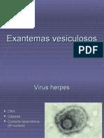 7-11 Exantemas vesiculosos