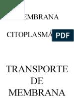 Apresentação Transporte Membrana